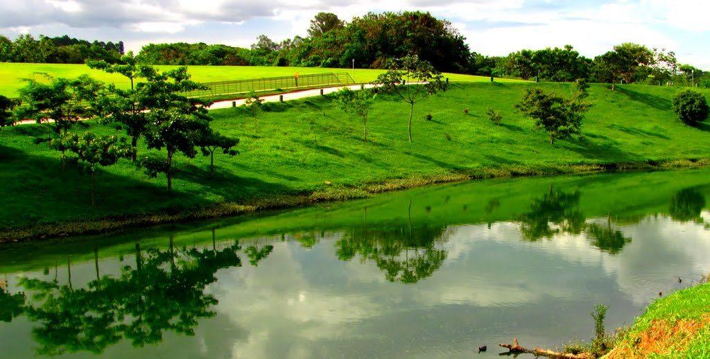 8 parques em BH que você precisa conhecer - parque ecológico da Pampulha