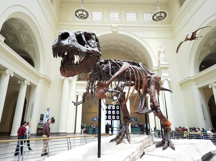 é possível! dicas preciosas de lazer gastando pouco - conheca museus e pontos historicos