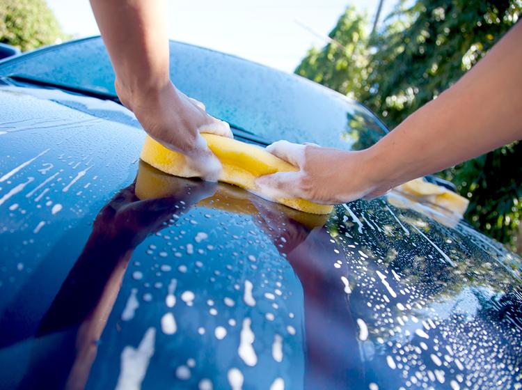 passo-a-passo simples para aprender a lavar seu o carro corretamente - lave por partes