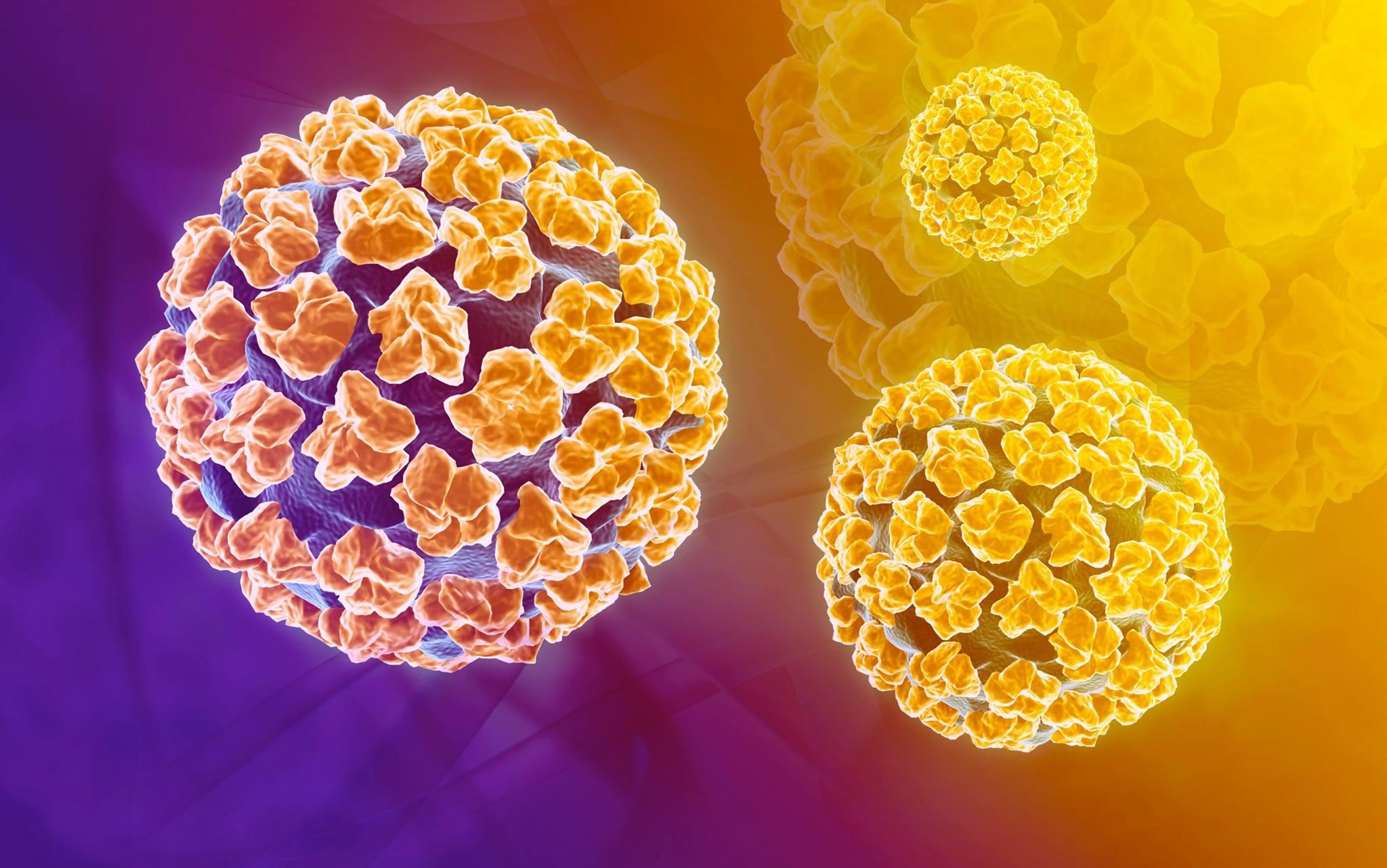 Ockovani hpv muzi cena Hpv virus u muzu ockovani. Duct papilloma histology