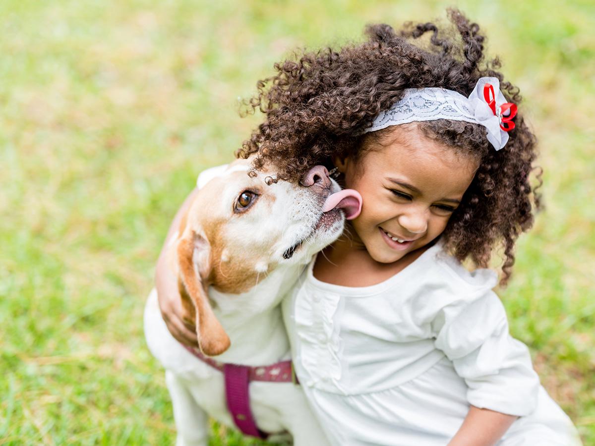 Cachorro lambendo garota, conheça os sinais de amor canino, Vizar Benefícios